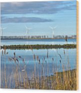 Windmills On A Windless Morning Wood Print