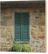 Window #3 - Cinque Terre Italy Wood Print