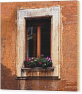 Window And Flowers Rome  Wood Print