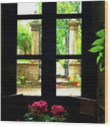 Window And Roses Wood Print