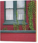 Window And Vines Wood Print