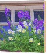 Window Box With Pansies Wood Print