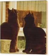 Window Cats Wood Print