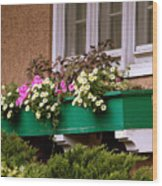 Window Flower Box Wood Print