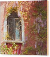 Window In Venice With Wisteria Wood Print