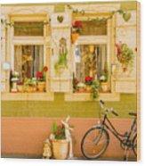 Window Into Heidelberg Wood Print