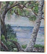Window On Pine Island Wood Print