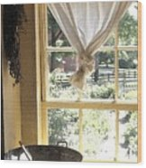Window On Yesterday Wood Print