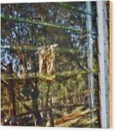 Window Reflection Wood Print