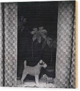 Window Scene Wood Print