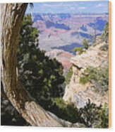 Window To The Past 21 - Grand Canyon Wood Print