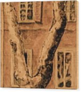 Windows In Rome Wood Print