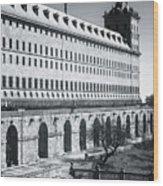 Windows Of El Escorial Spain Wood Print