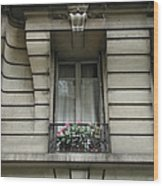 Windows Of Paris Wood Print