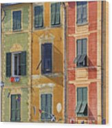 Windows Of Portofino Wood Print