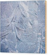 Iced Windshield  Wood Print