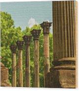 Windsor Ruins Wood Print