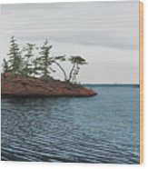 Windswept Island Georgian Bay Wood Print
