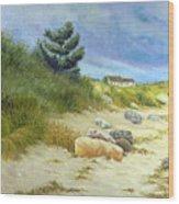Windswept Sands Wood Print