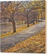 Windswept Walk Wood Print by Susan Cole Kelly