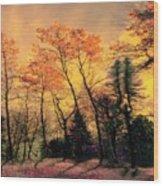 Windy  Wood Print by Elfriede Fulda