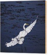 Windy Flight Wood Print