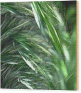 Windy Fractal Field Wood Print
