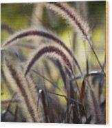 Windy Grass Wood Print