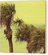 Windy Palms Wood Print