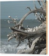 Windy Sea Wood Print