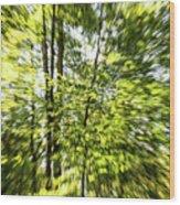 Windy Trees Wood Print