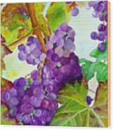 Wine Vine Wood Print