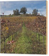 Wineland Wood Print by Kenneth Hadlock