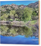 Winery Pond Reflections Wood Print