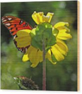 Wing Flower Wood Print
