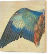 Wing Of A Blue Roller 1512 Wood Print