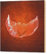 Winged Heart Wood Print