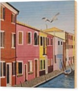 Wingin It In Venice Wood Print