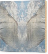 Wings 1 Wood Print