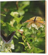 Wings And Blooms Wood Print