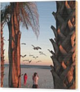 Wings Over The Palms Wood Print