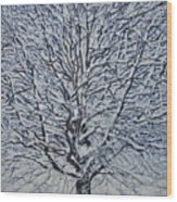 Winter '05 Wood Print by Leah  Tomaino