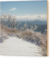 Winter Above The Land Wood Print