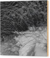 Winter Abstract Black And White Wood Print