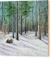 Winter Afternoon Wood Print