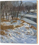 Winter Along The Little Sioux Wood Print