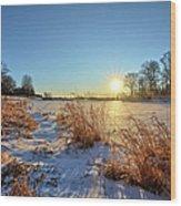 Winter At Mayne's Wood Print