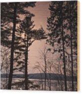 Winter At Nepaug Wood Print