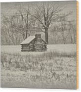 Winter At Valley Forge Wood Print