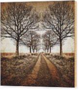 Winter Avenue Wood Print